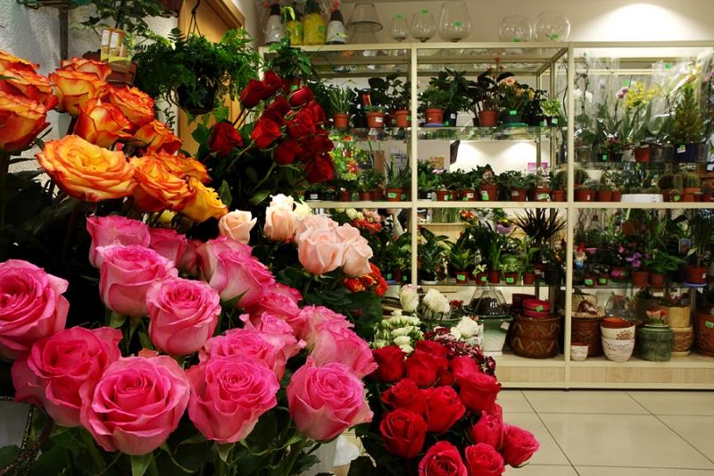 Доставка цветов для магазинов купить искусственные цветы для поминального дня